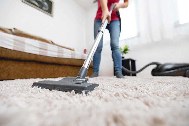 ways-get-rid-carpet-beetles-person-vacuum