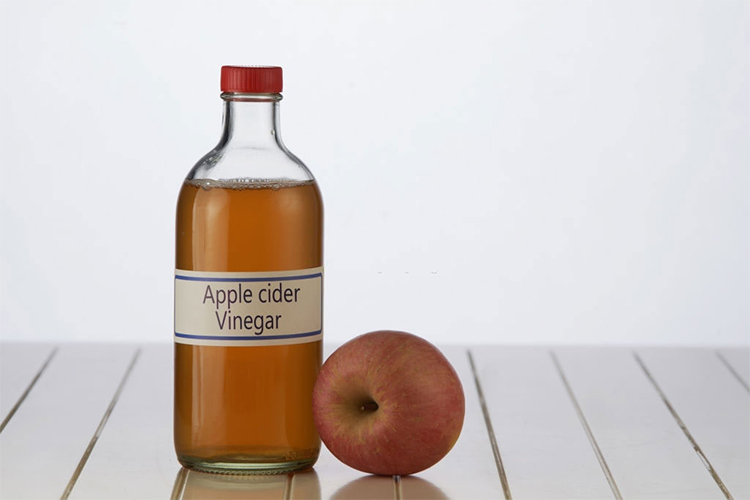 how-to-get-rid-gnats-apple-cider-vinegar