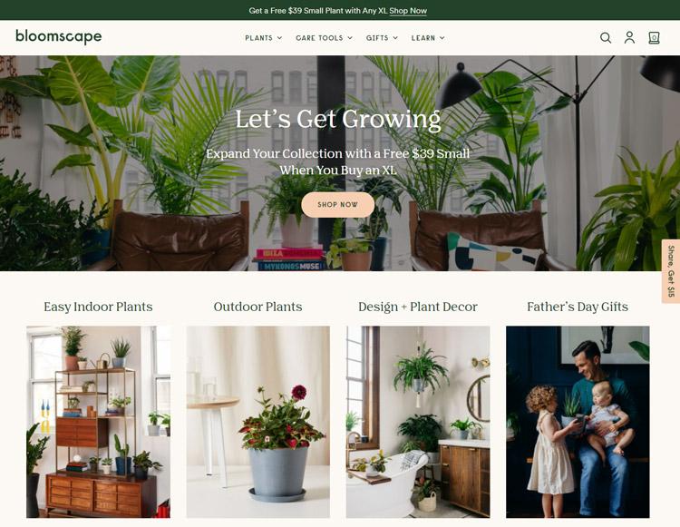places buy plants online bloomscape