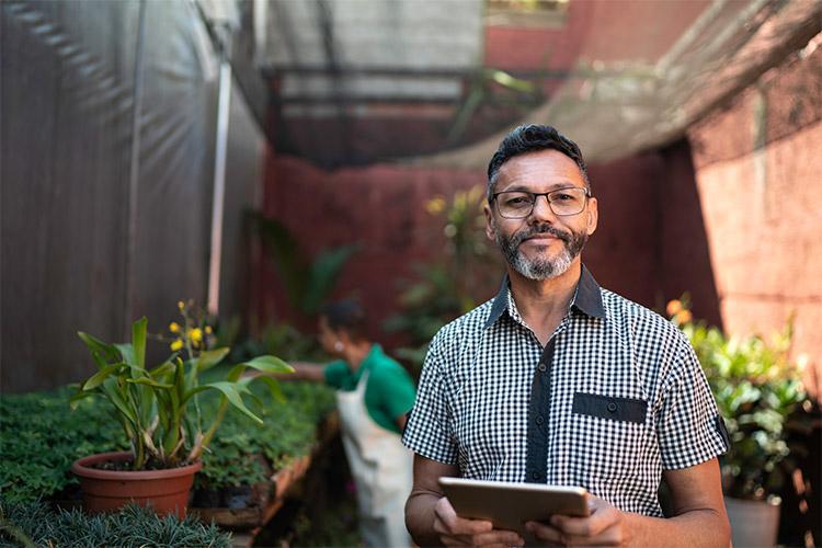 places buy plants online featured image