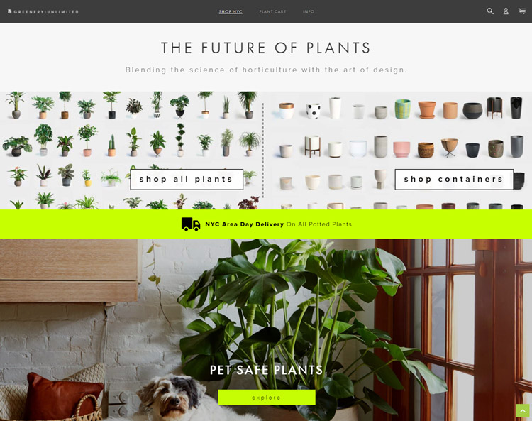places buy plants online green unlimited
