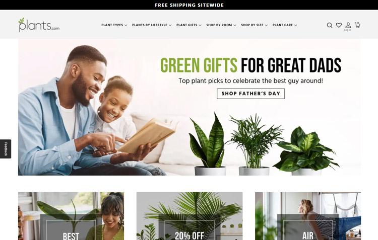 places buy plants online plants