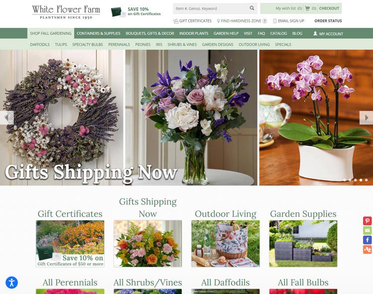 places buy plants online white flower farm