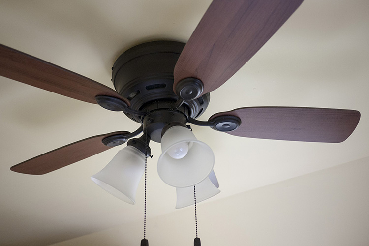 ceiling fan direction summer and winter to save electricity featured image