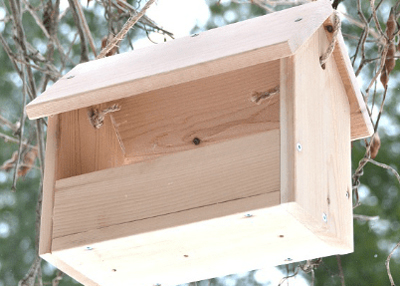 how to diy bird feeder ideas diy bird feeder from 100 things 2 do