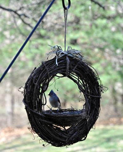 how to diy bird feeder ideas diy grapevine bird feeder from rebeccas bird gardens