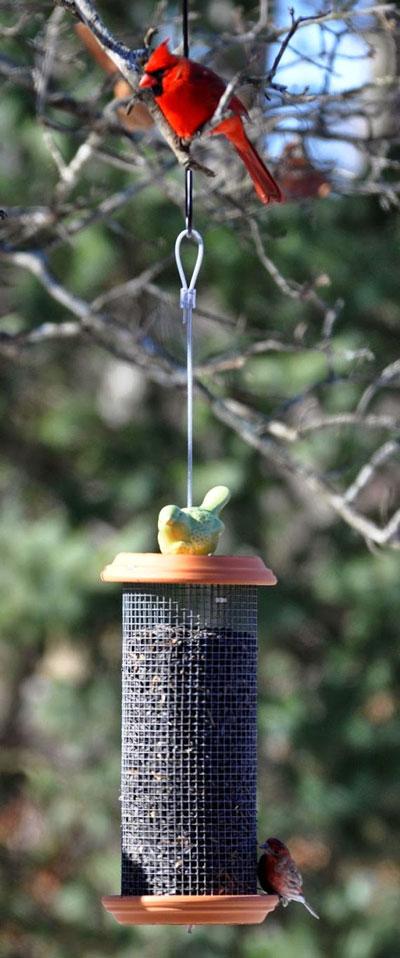 how to diy bird feeder ideas diy sunflower tower bird feeder from the garden roof coop