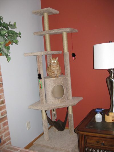 the ultimate diy cat tree carpet covered cat tree with a hammock