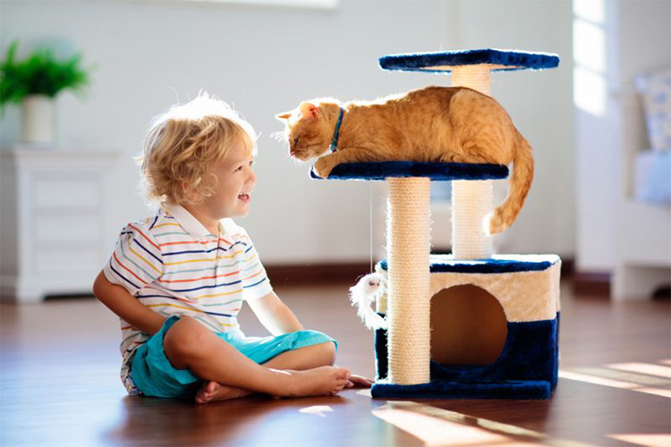 the ultimate diy cat tree featured image