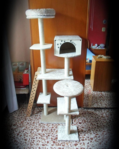 the ultimate diy cat tree tall cat tree with a cat house