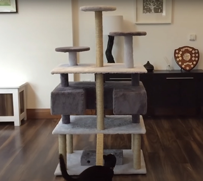 the ultimate diy cat tree youtube